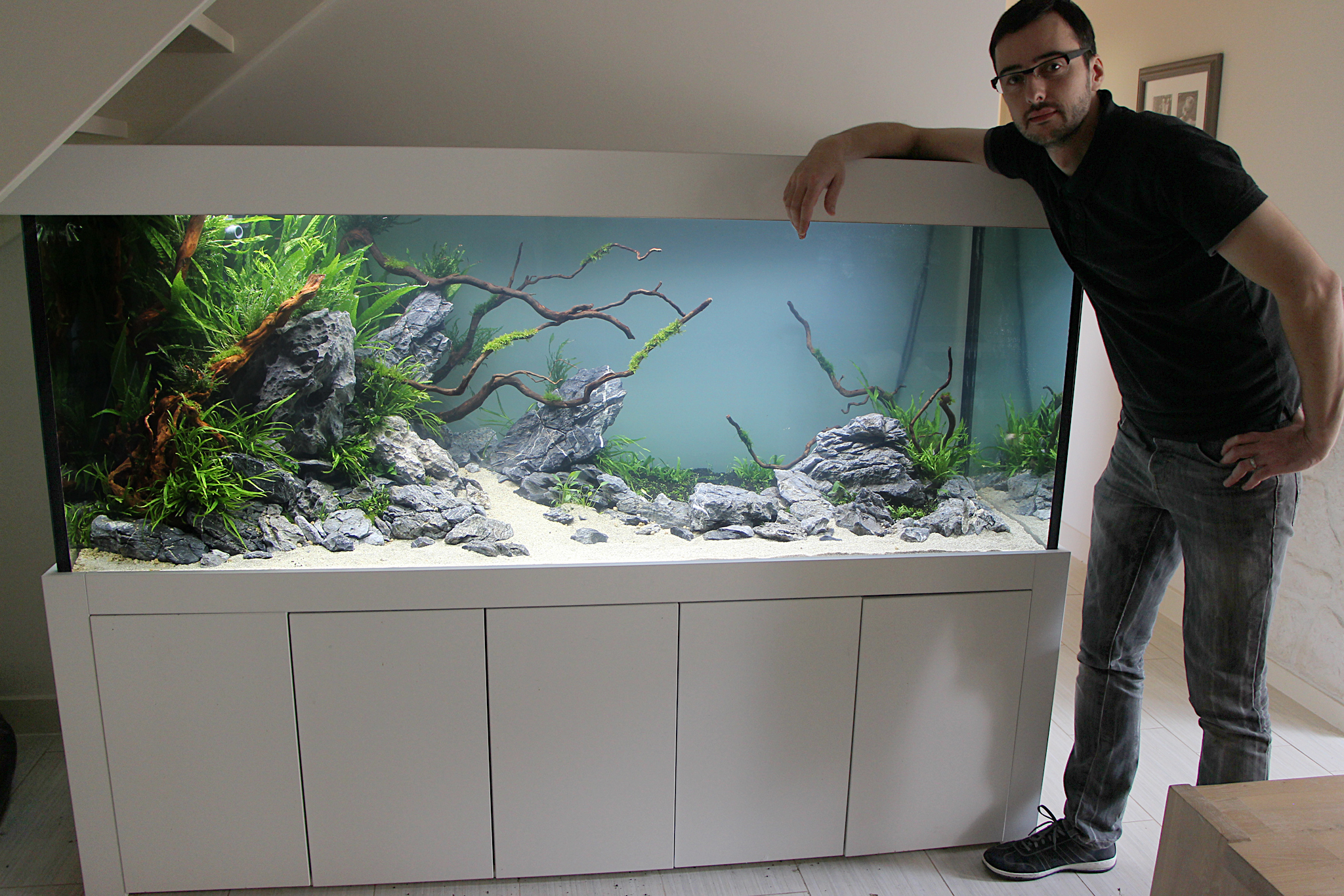 diskusbecken als unterwasserlandschaft aquarienvorstellung aquascaping forum. Black Bedroom Furniture Sets. Home Design Ideas