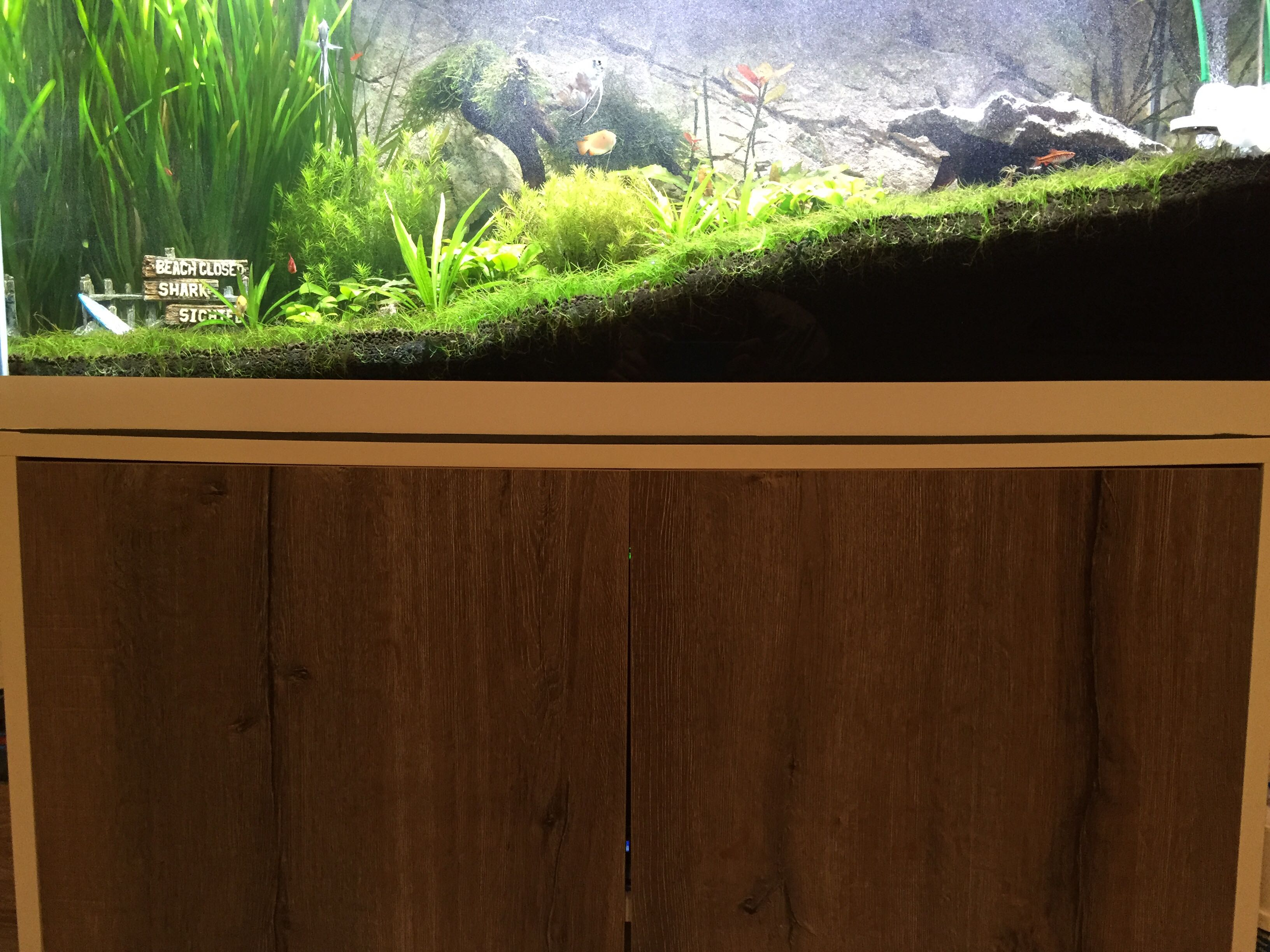 mein aquarium schrank h ngt durch sonstige technik aquascaping forum. Black Bedroom Furniture Sets. Home Design Ideas
