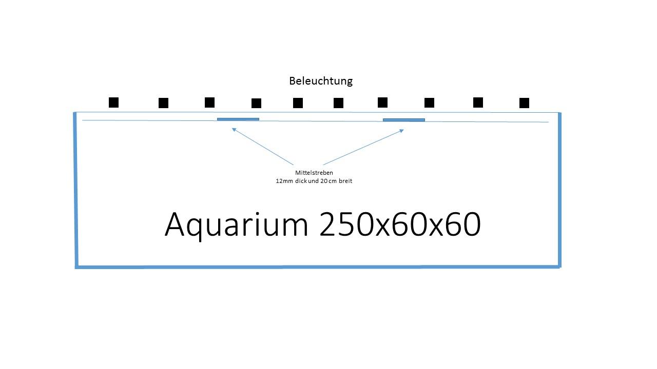 Anordnung der Leuchtbalken über dem Aquarium. - Aquariumbeleuchtung ...