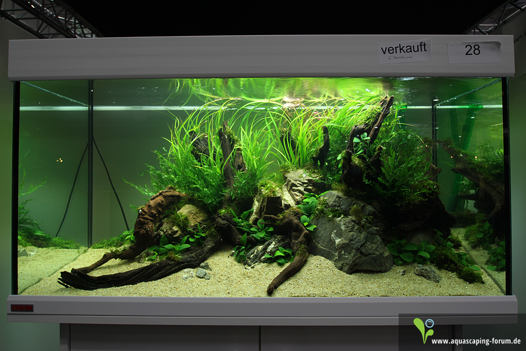 The Art of the Planted Aquarium 2013 - XL Aquascapes ...