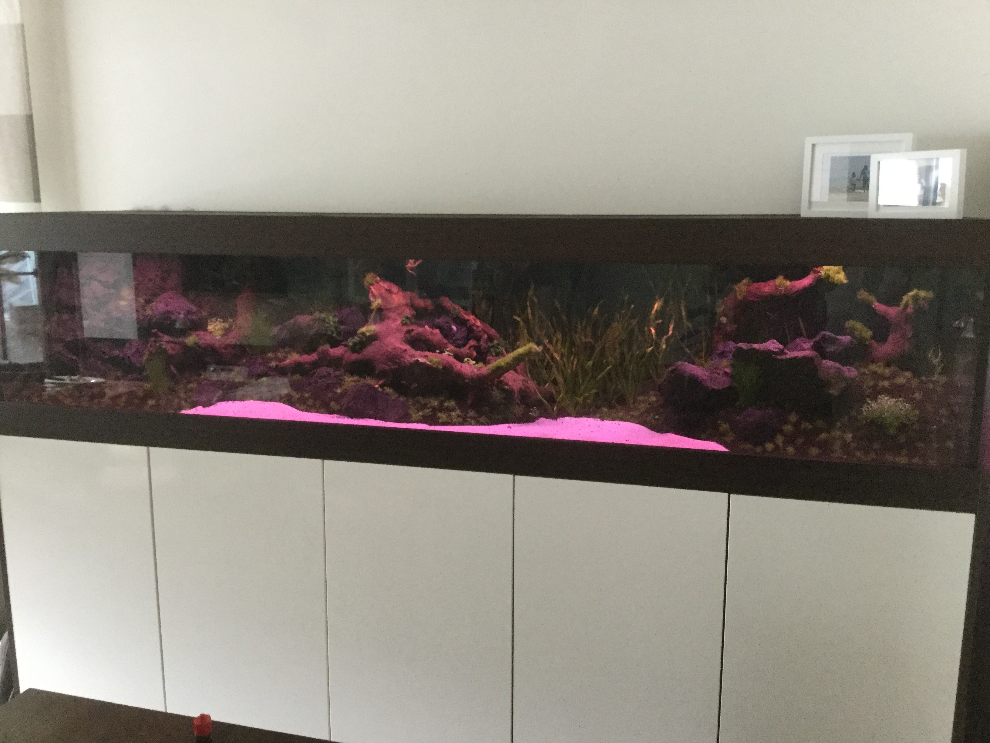 beleuchtungsdauer inkl sonnenaufgang aquariumbeleuchtung aquascaping forum. Black Bedroom Furniture Sets. Home Design Ideas