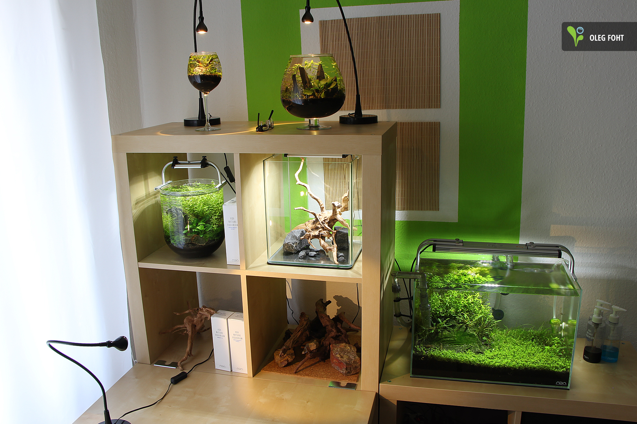 Top Und Flop Des Tages Seite 10 Off Topic Aquascaping Forum