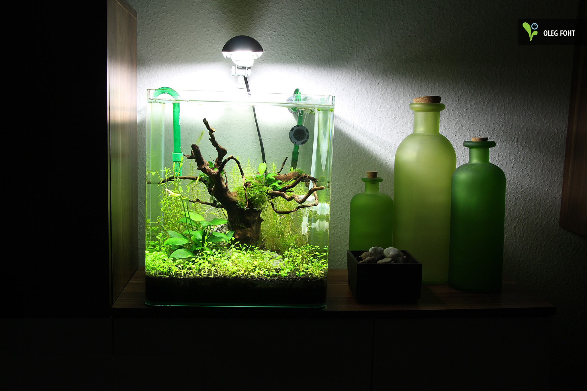 30l nano aquarium sleepy hill aquarienvorstellung aquascaping forum. Black Bedroom Furniture Sets. Home Design Ideas