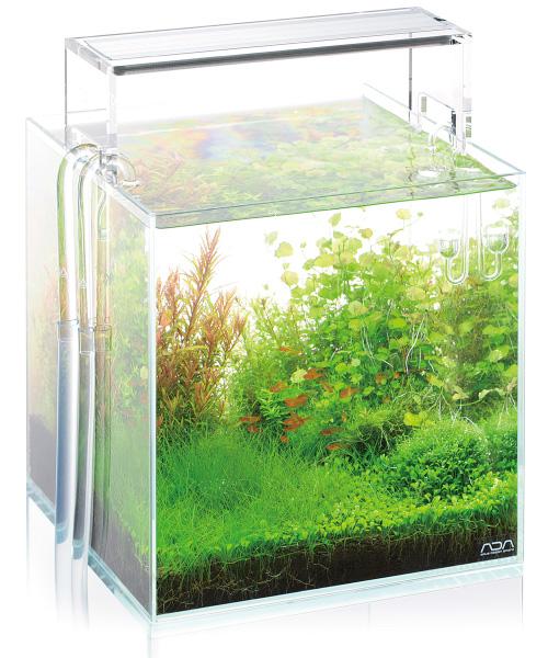 led aquarium beleuchtung im vergleich zu t5 t8 wie viel watt oder lumen aquariumbeleuchtung. Black Bedroom Furniture Sets. Home Design Ideas