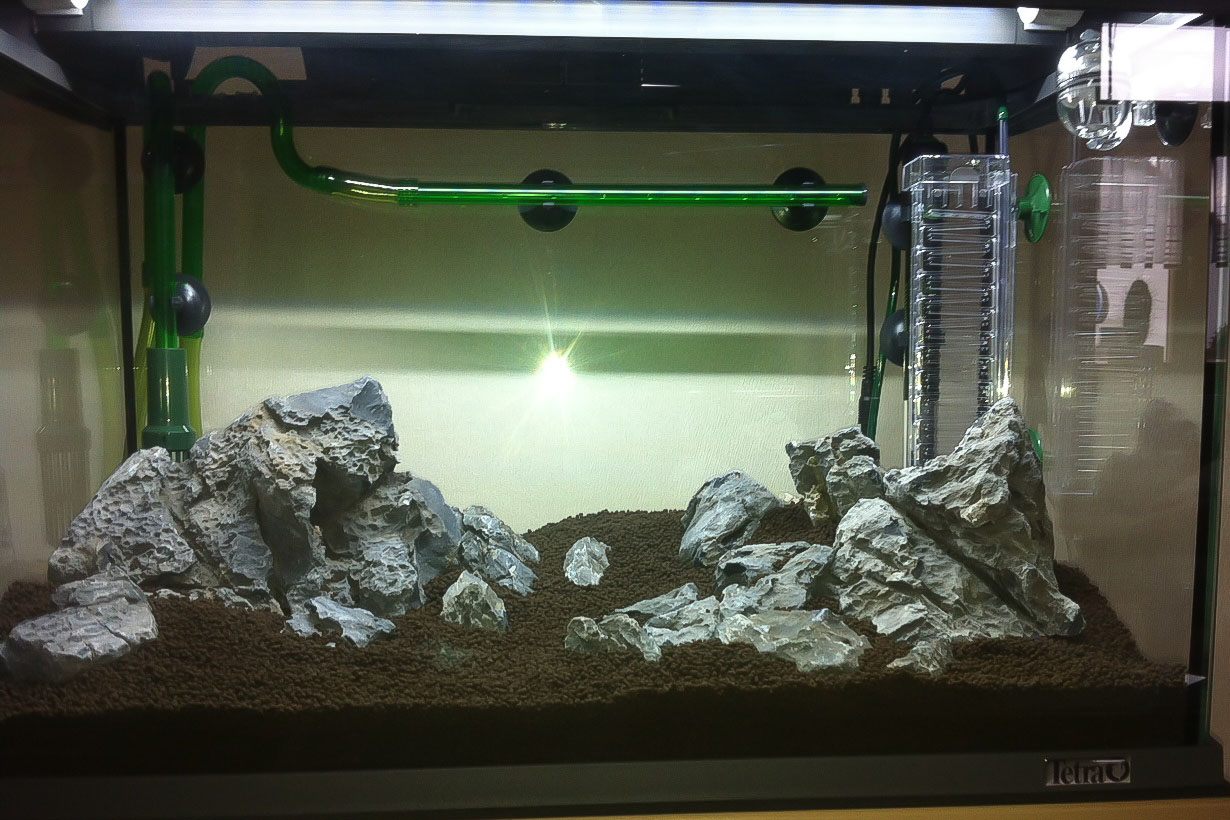 Erstes Aquascape - Aquarienvorstellung - Aquascaping Forum