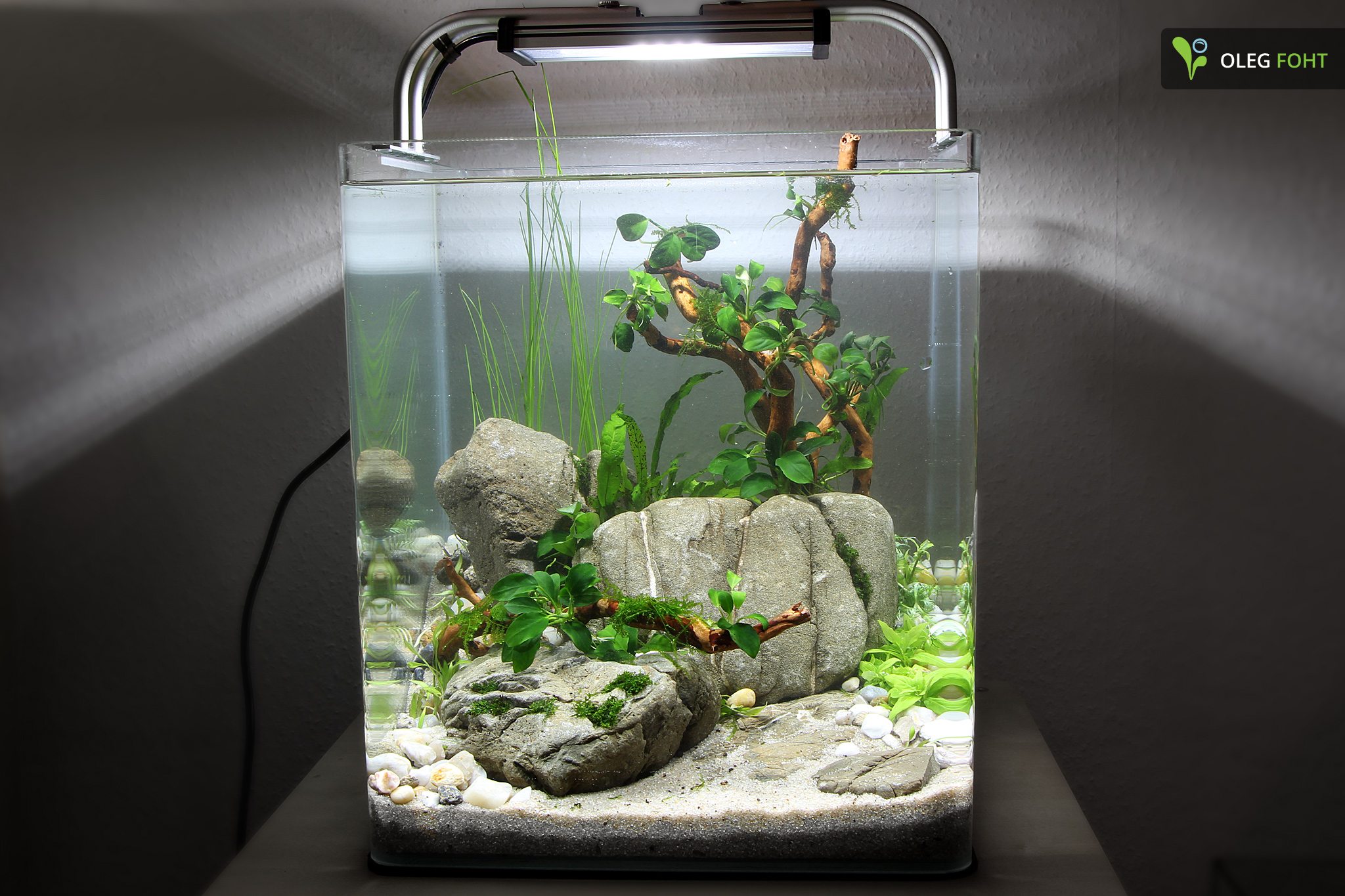 30l nano cube quickie aquarienvorstellung aquascaping forum. Black Bedroom Furniture Sets. Home Design Ideas