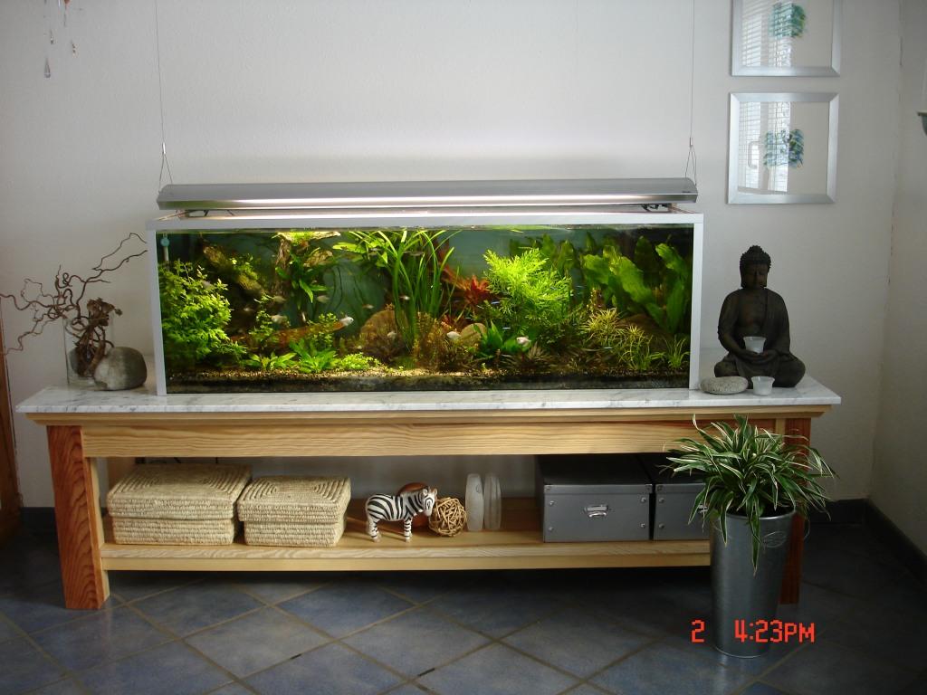 langes aquarium