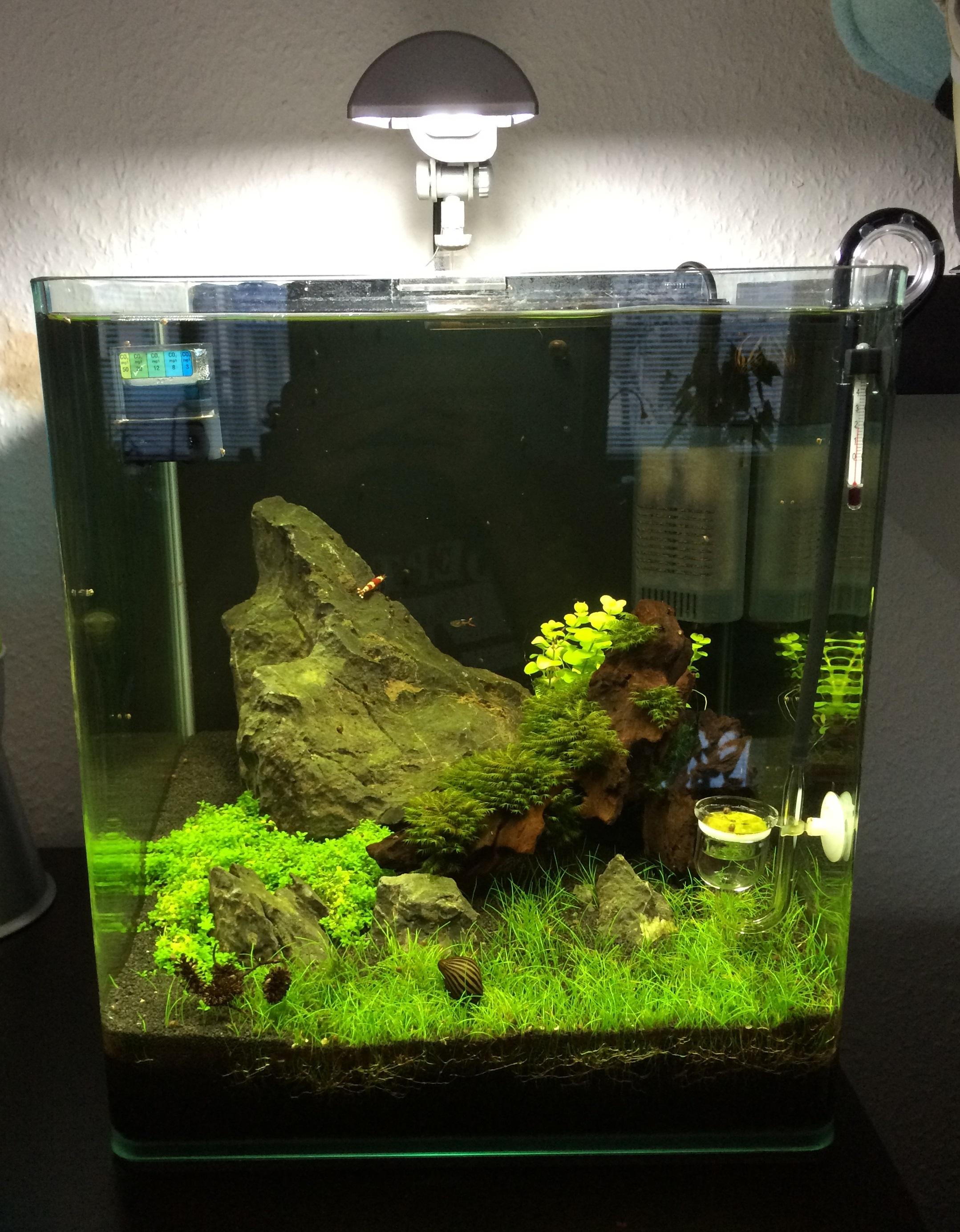 diy led lampe selber bauen seite 48 aquariumbeleuchtung aquascaping forum. Black Bedroom Furniture Sets. Home Design Ideas